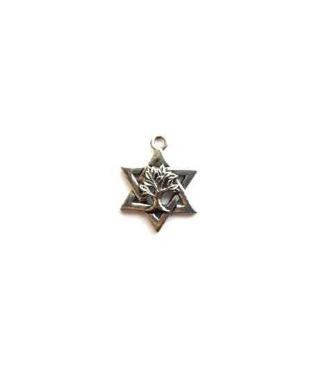 Star of David w/Tree of Life Charm 26x20mm
