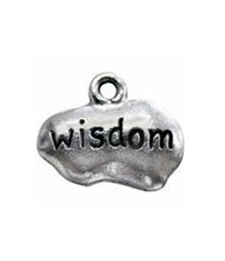 3949 15x12mm Wisdom Tag Pewter Charm